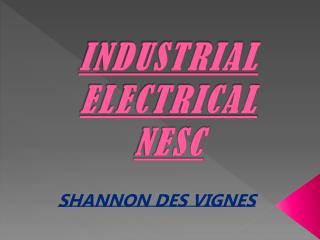 INDUSTRIAL ELECTRICAL  NESC