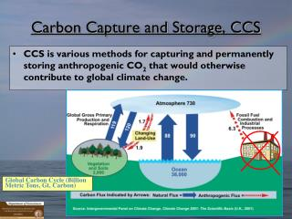 Carbon Capture and Storage, CCS