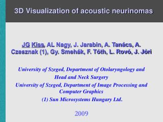 3D Visualization of acoustic neurinomas