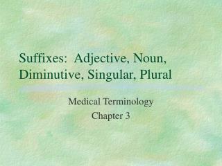 Suffixes: Adjective, Noun, Diminutive, Singular, Plural