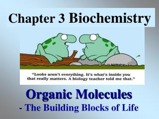 Organic Molecules - The Building Blocks of Life
