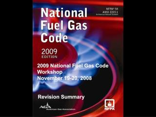 2009 National Fuel Gas Code Workshop   November 19-20,  2008
