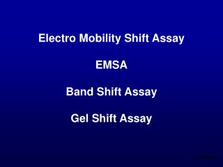 Electro Mobility Shift Assay EMSA Band Shift Assay Gel Shift Assay