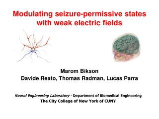 Modulating seizure-permissive states with weak electric fields