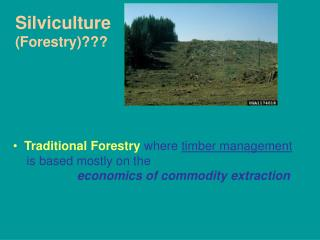 Silviculture (Forestry)???