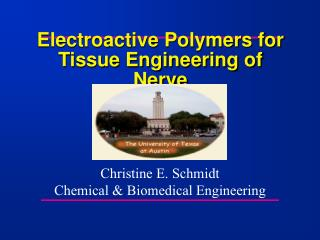 Electroactive Polymers for  Tissue Engineering of Nerve
