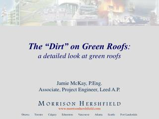"The ""Dirt"" on Green Roofs : a detailed look at green roofs"
