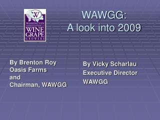 WAWGG: A look into 2009