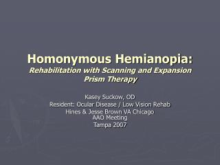 Homonymous Hemianopia: Rehabilitation with Scanning and Expansion Prism Therapy