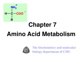 Chapter 7  Amino Acid Metabolism