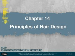Chapter 14  Principles of Hair Design