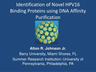 Identification of Novel HPV16  Binding  Proteins using DNA Affinity Purification