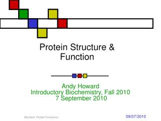 Protein Structure & Function