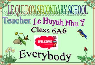 Le Huynh Nhu Y