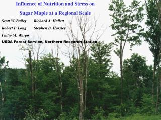 Influence of Nutrition and Stress on Sugar Maple at a Regional Scale
