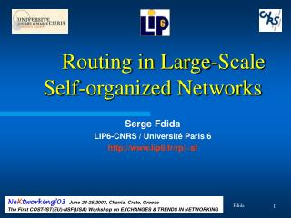 Routing in Large-Scale Self-organized Networks