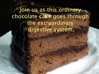 The chocolate cake is now going to go through digestion