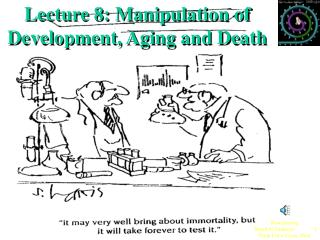 Lecture 8: Manipulation of Development, Aging and Death