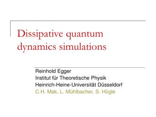 Dissipative quantum dynamics simulations
