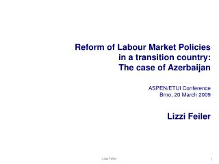 Reform of Labour Market Policies in a transition country:  The case of Azerbaijan