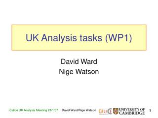 UK Analysis tasks (WP1)