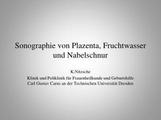Sonographie von Plazenta, Fruchtwasser und Nabelschnur