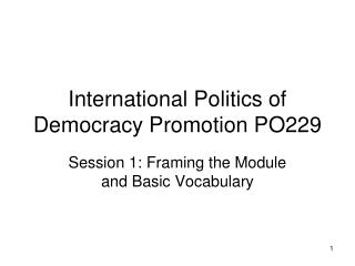 International Politics of Democracy Promotion PO229