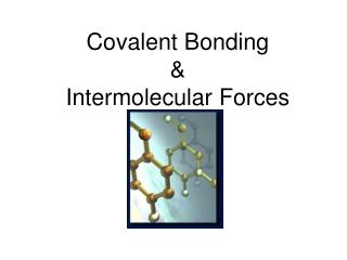 Covalent Bonding & Intermolecular Forces