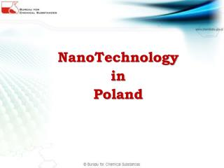 NanoTechnology in Poland