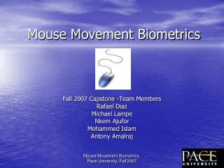 Mouse Movement Biometrics