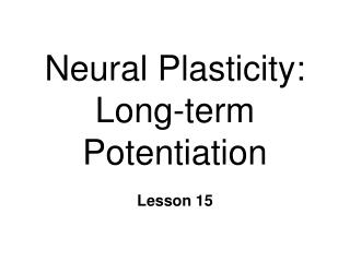 Neural Plasticity: Long-term Potentiation