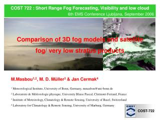 COST 722 : Short Range Fog Forecasting, Visibility and low cloud