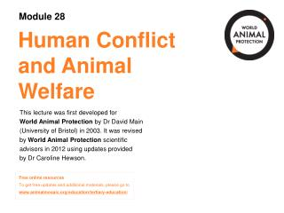 Human Conflict and Animal Welfare