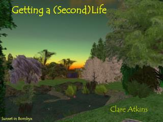 Getting a (Second)Life