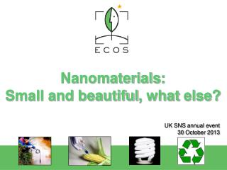 Nanomaterials : Small and  beautiful ,  what else ?