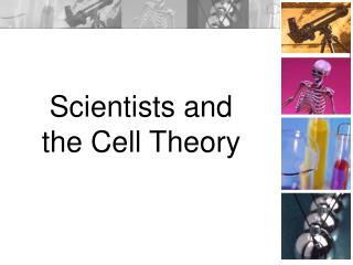 Scientists and  the Cell Theory