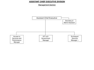 Assistant Chief Executive