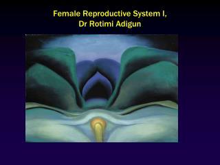 Female Reproductive System I, Dr Rotimi Adigun
