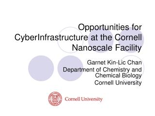 Opportunities for CyberInfrastructure at the Cornell Nanoscale Facility