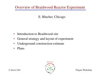 Overview of Braidwood  Reactor Experiment