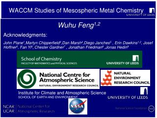 WACCM Studies of Mesospheric Metal Chemistry
