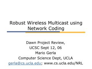 Robust Wireless Multicast using Network Coding