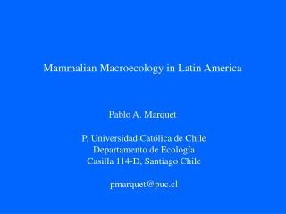 Mammalian Macroecology in Latin America