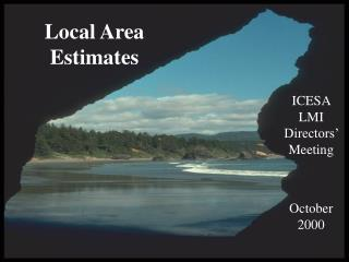 Local Area Estimates