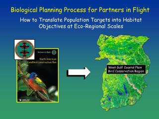 Biological Planning Process for Partners in Flight