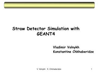 Straw Detector Simulation with GEANT4