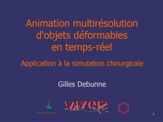 Animation multirésolution d'objets déformables en temps-réel