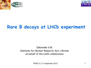 Rare B decays at LHCb experiment