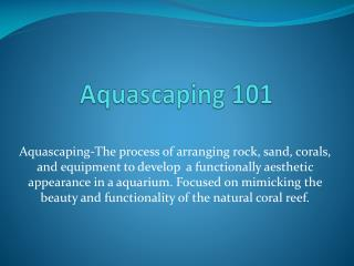 Aquascaping  101