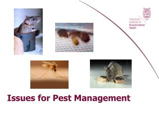 Issues for Pest Management